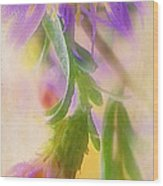 Impression Of Asters Wood Print