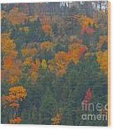 Imprssions Of Autumn Wood Print