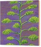 In Agave Davida 2 Wood Print