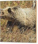 In Stride Wood Print