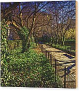 In The Conservatory Garden Wood Print