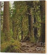In The Land Of The Giants  Wood Print