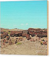 In The Petrified Forest In Arizona Wood Print