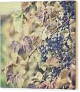 In The Vineyard Wood Print by Lisa Russo