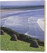 Inch Beach, Co Kerry, Ireland Wood Print