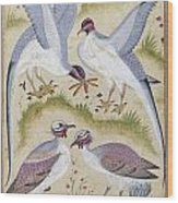 India: Pheasants Wood Print