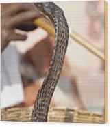 Indian Cobra Wood Print