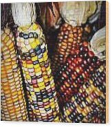 Indian Corn 2 Wood Print