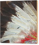 Native American War Bonnet Wood Print