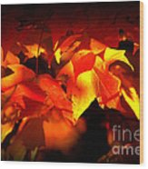 Indian Summer Sparkle Wood Print