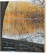 Indiana Dock Wood Print by Joyce Kimble Smith
