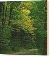 Indiana Road Wood Print by Joyce Kimble Smith