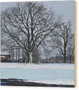 Indiana Winter Wood Print