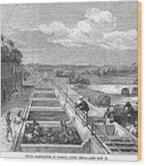 Indigo Manufacture, 1869 Wood Print
