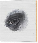 Indys Eye Wood Print