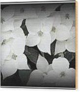 Inflorescence Wood Print