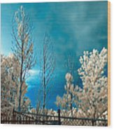 Infrared Summer Storm Wood Print
