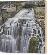 Inglis Falls Wood Print
