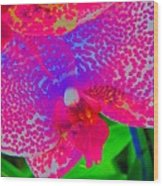 Inner Beauty - Orchid - Gardens Wood Print