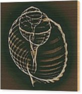 Inner Worlds Wood Print by Sara Koenig King