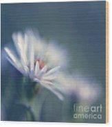 Innocence - 03 Wood Print