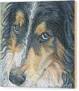 Innocent Eyes Wood Print by Karen Curley