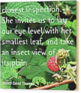 Insect View Wood Print