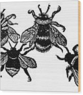 Insects: Bees Wood Print