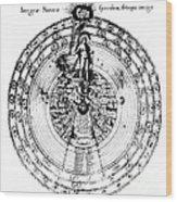 Integrae Naturae, 17th Century Wood Print