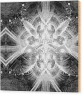 Intelligent Design Bw 2 Wood Print by Angelina Vick