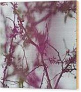 Inter-vined Wood Print