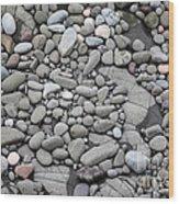 Intertidal Shore Wood Print