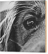 Into Her Eyes Wood Print