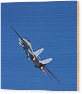 Into The Wild Blue Yonder Wood Print