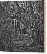Into The Wilderness Wood Print