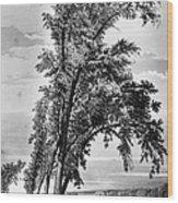Iowa: Council Bluffs, 1855 Wood Print
