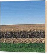 Iowa Landscape Iv Wood Print