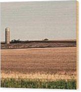 Iowa Landscape V Wood Print