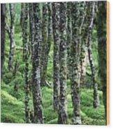 Ireland 0001 Wood Print