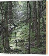 Ireland 0002 Wood Print