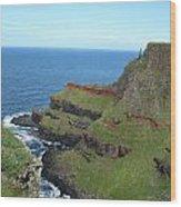 Ireland 0012 Wood Print