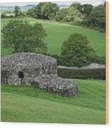 Ireland 0013 Wood Print