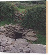 Ireland Time Traveler's Portal Wood Print