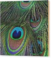Iridescent Eyes Wood Print