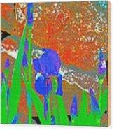 Iris 31 Wood Print