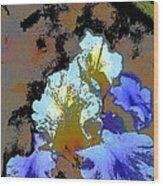 Iris 41 Wood Print
