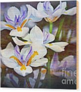 Iris Art Wood Print