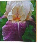 Iris Finery Wood Print