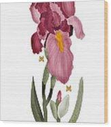 Iris II In Full Color Wood Print