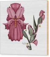 Iris IIi  Wood Print by Anne Norskog